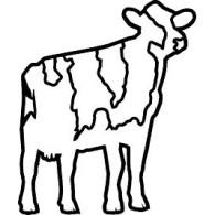 Groot Steinfort logo